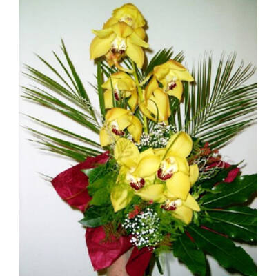 Csodalámpa - Orchidea 04