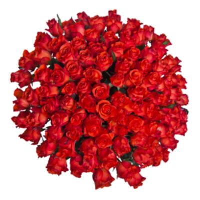 Szapphó álma - Rózsacsokor 18