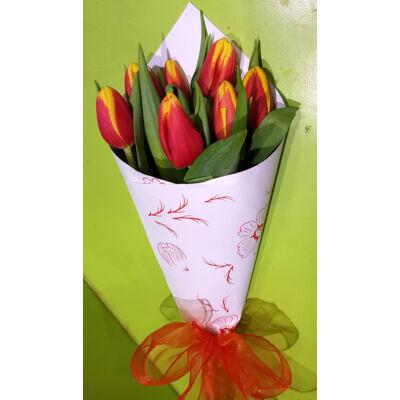 Twister - Tulipánok tölcsérben