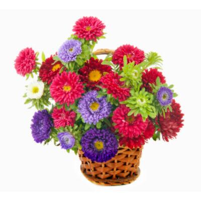 Erdei tisztás - Virágkosár 04